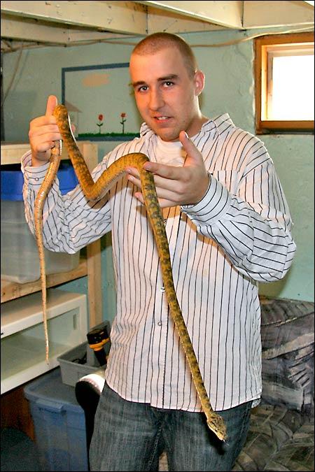 Des photos de tout mes serpents Atbmale03
