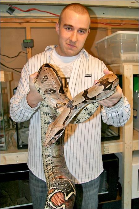 Des photos de tout mes serpents Bccfemelle01