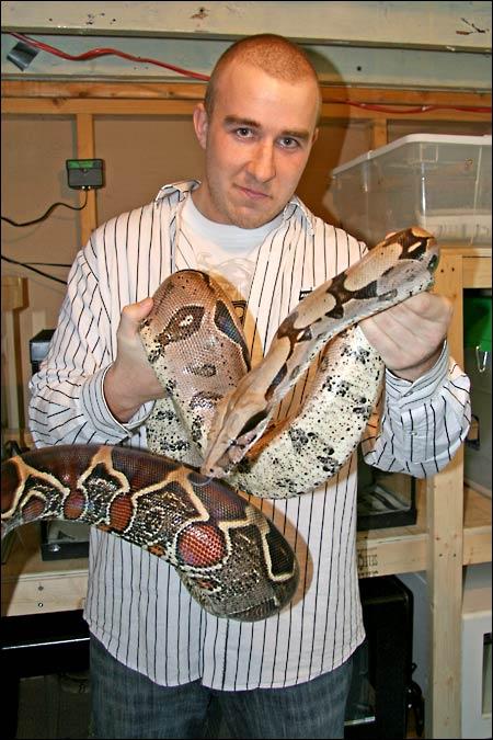 Des photos de tout mes serpents Bccfemelle02
